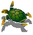 (swimming turtle)